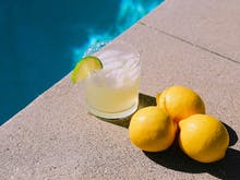 Spring Has Sprung, Here Are 3 Cocktail Recipes You Can Master Using Ingredients Grown At Home