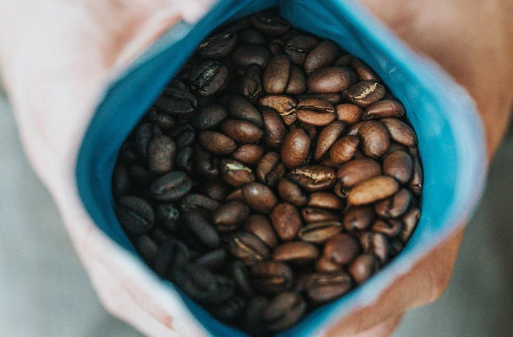 roasted coffee beans in a bag held open by a pair of hands