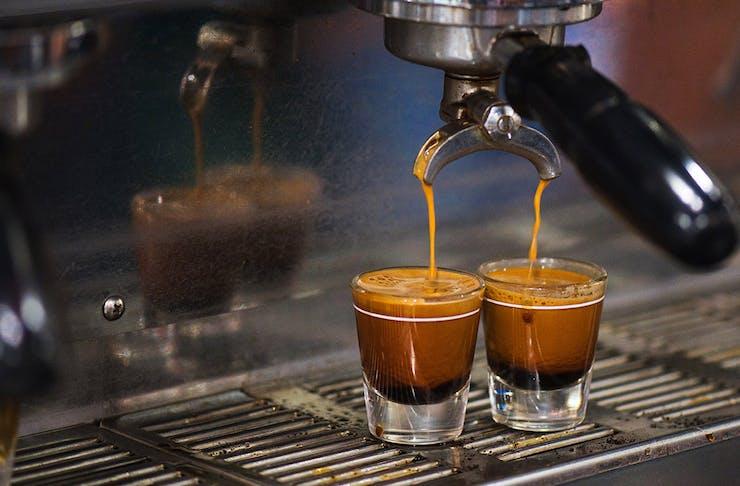 Coffee Festival