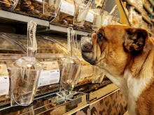 Buy Your Four-Legged Friend The Treats They Deserve With Coles' New Self-Serve Dog Treat Bar