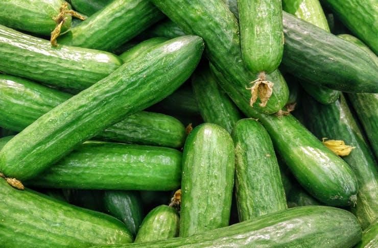 cucumber haters understand
