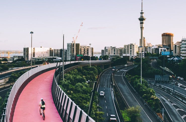 Wheely Fun | Where To Cycle In Auckland