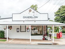 Dandelion & Driftwood