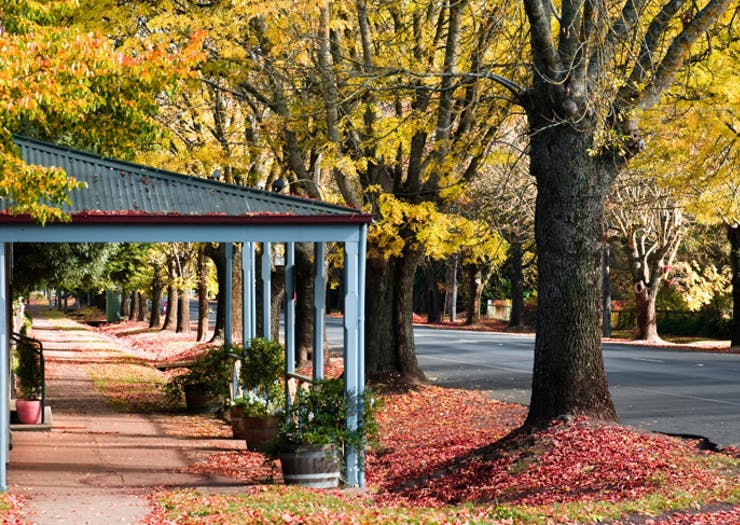 Everything Worth Eating, Seeing And Doing In Daylesford