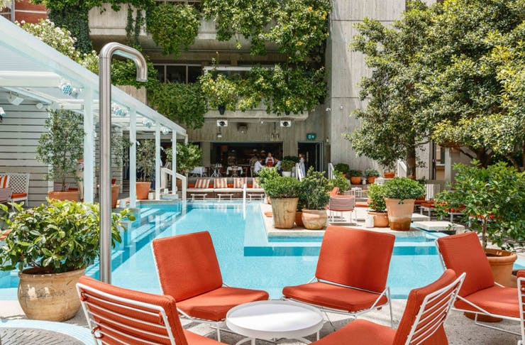 A rooftop pool bar with red loungers and lots of greenery