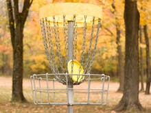 Dust Off Your Frisbee, Brisbane Just Scored A New 18-Basket Disc Golf Course