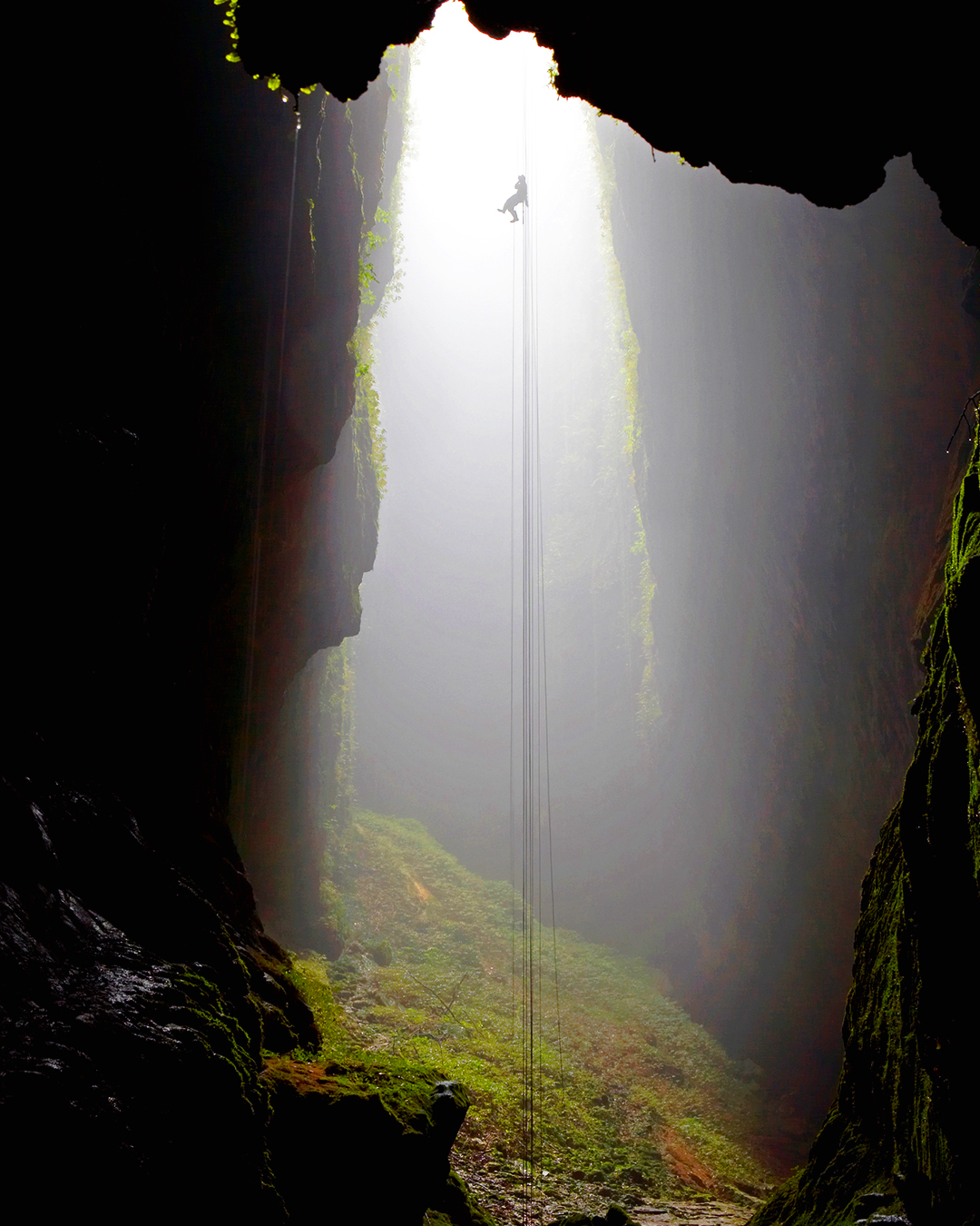Abseiling With Waitomo Adventures