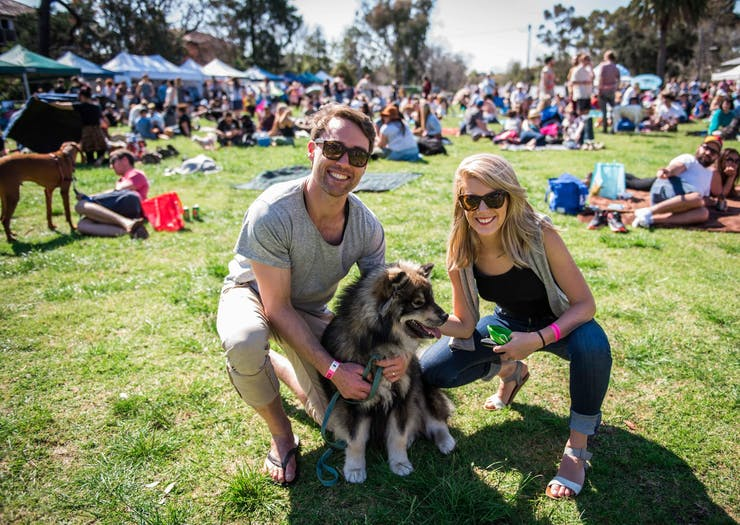 Melbourne's 'Coachella For Dogs' Festival Is Back This Year