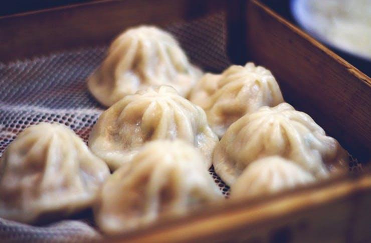 dumpling-festival-brisbane