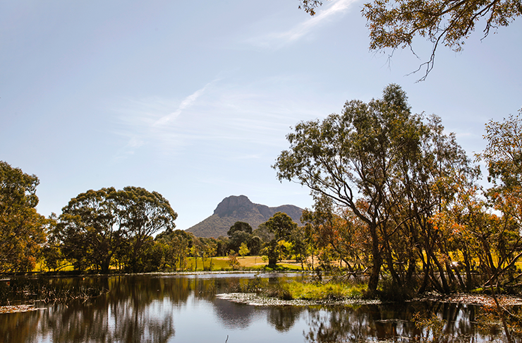 The tranquil waterways on a clear day at the Dunkeld arboretum.