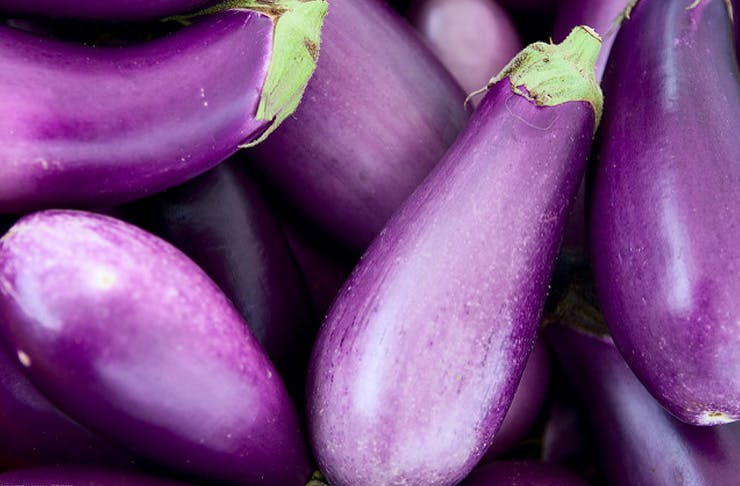 eggplant delivery