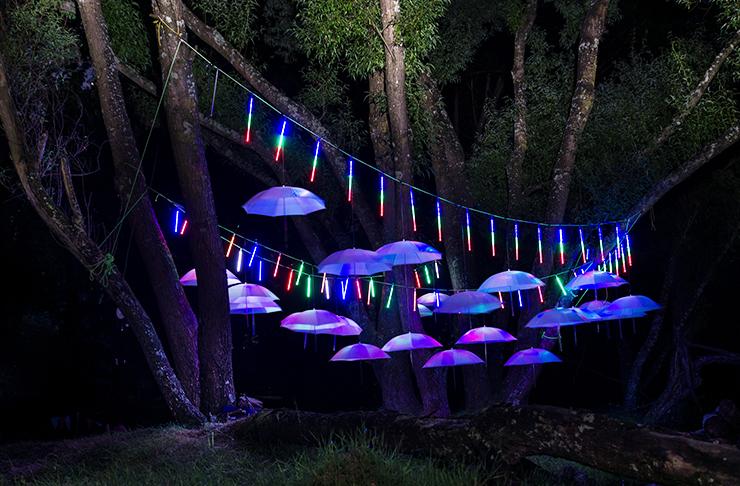ellerslie festival lights