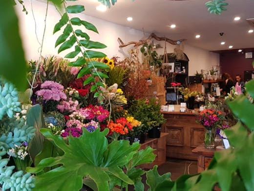 elwood-florist-melbourne