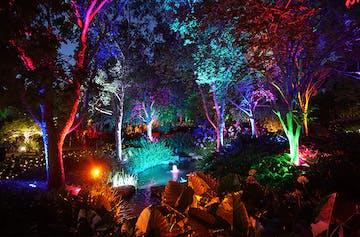 Take A Twilight Stroll Through This Magical Enchanted Garden Next Month
