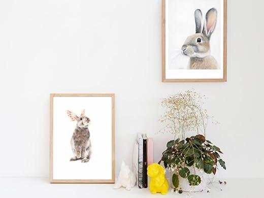 endemic world auckland, art prints auckland, interior design auckland, art shop ponsonby
