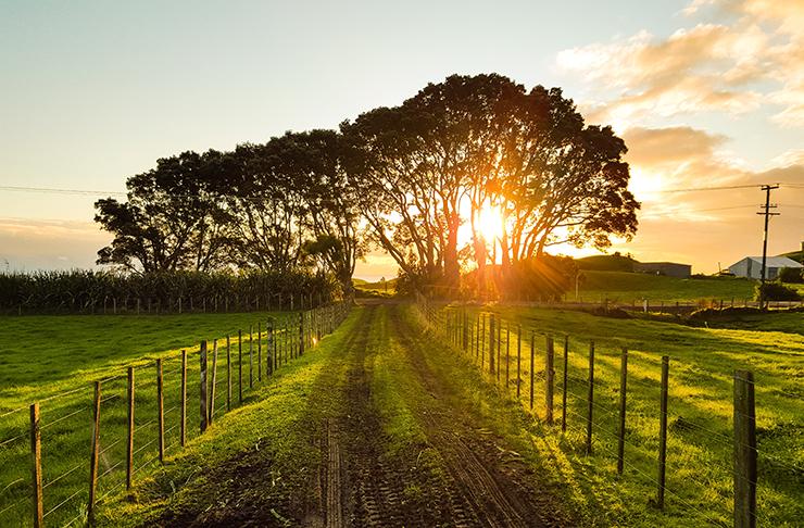 farm-stays-queensland