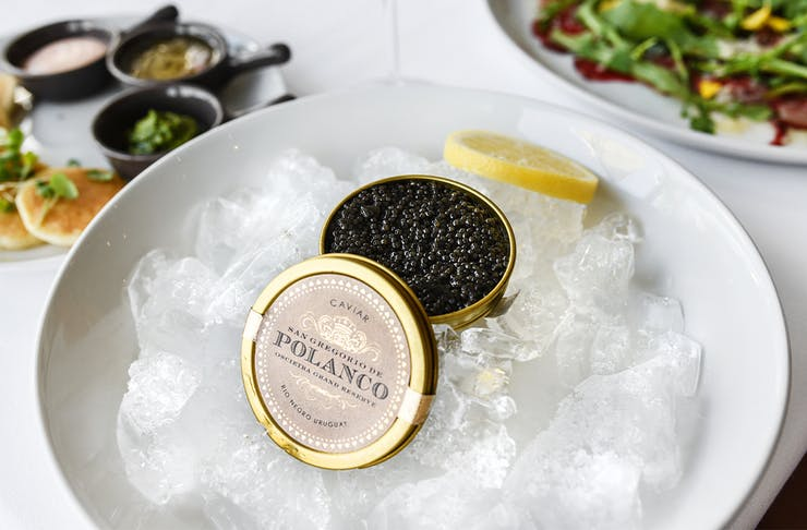 a tin of caviar on a bowl of ice
