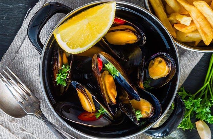 festival-of-mussels-brisbane