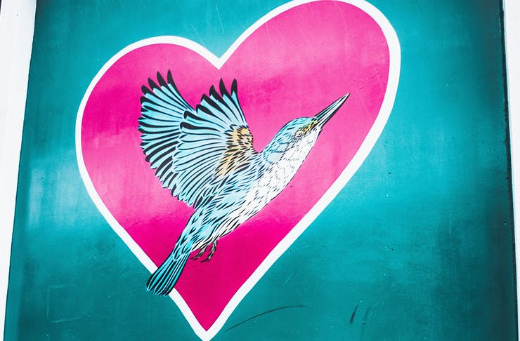 An image of a blue kingfisher on a pink heart drawn on the side of a building in Christchurch.