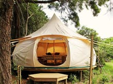 Glamping Getaways In And Around Auckland To Book Now