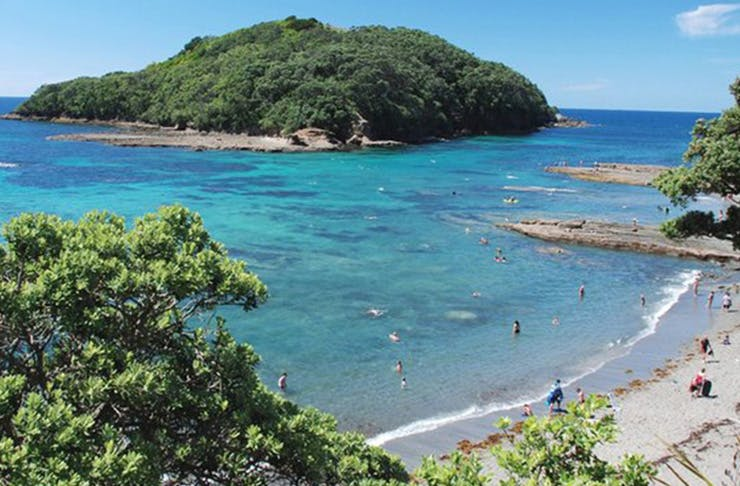 things to do in auckland for free, free things to do in auckland, what to do in auckland free