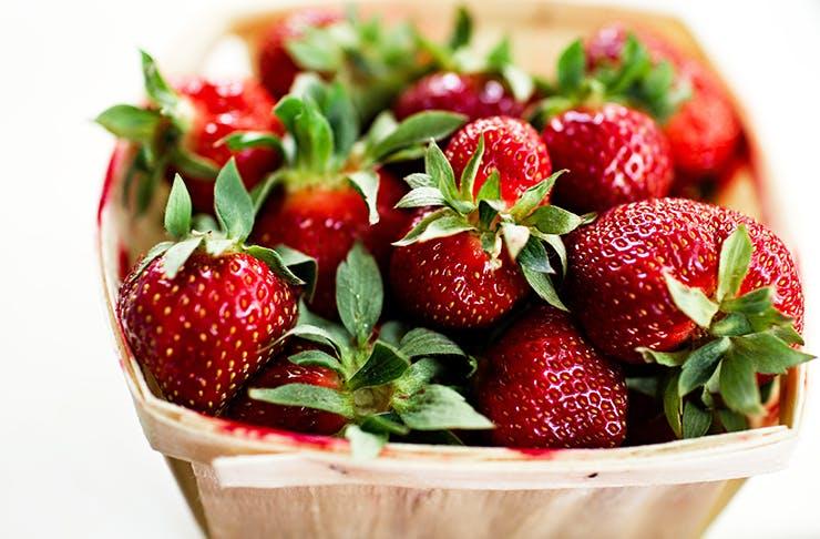 fruit-picking-brisbane