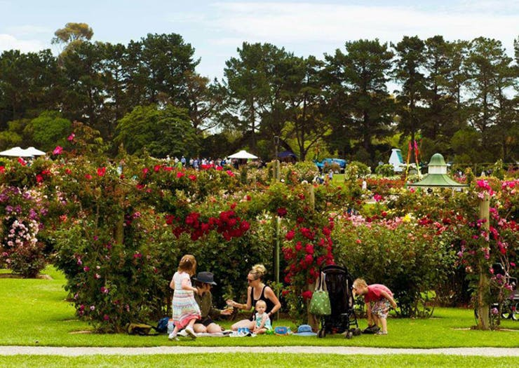 19 Awesome Things To Do In Melbourne This Weekend