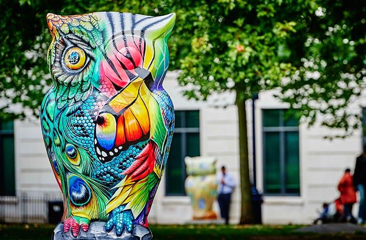 auckland-owl-sculptures