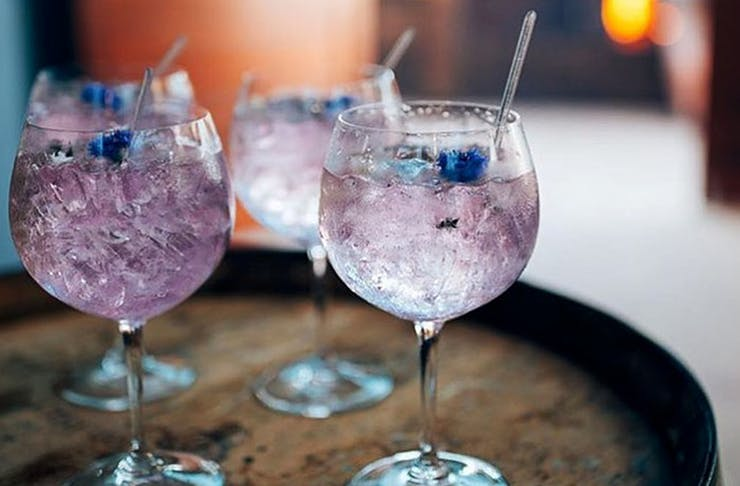 gin-festival-brisbane
