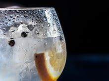 Grab Your Glass, A Mighty Gin Festival Is Coming To Auckland And Christchurch