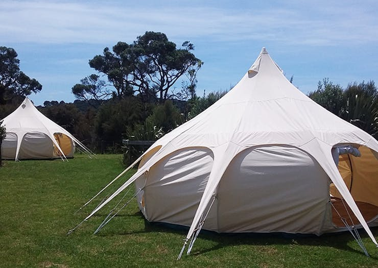 Psst! Auckland Has New Glamping Spots!