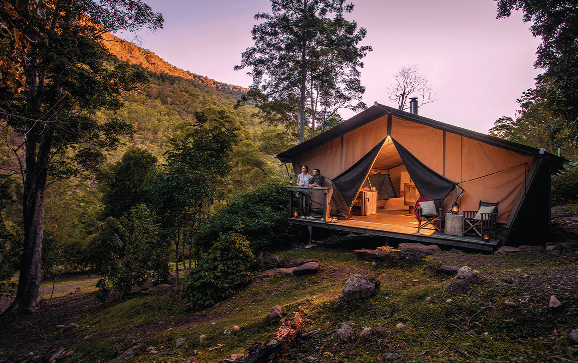 a glamping tent in the rainforest