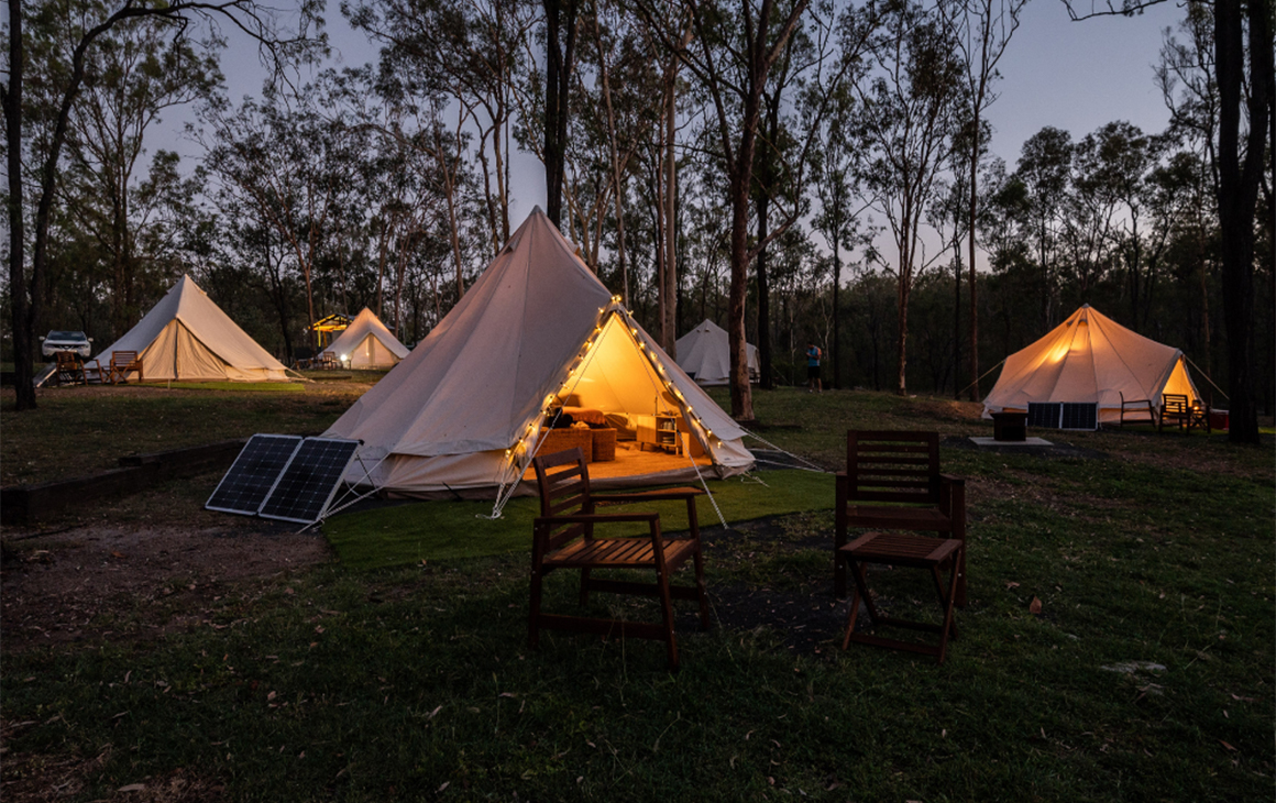 three canvas tents in the bush at dusk