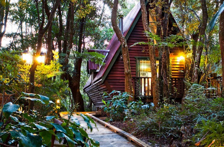 A Gold Coast cabin set amongst the trees
