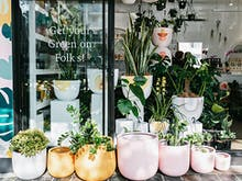 GreenFolk Botany Shop