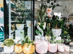 GreenFolk Botany Shop