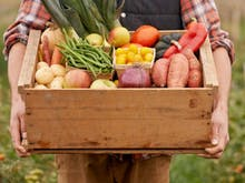 Support Local With The 5 Best Christchurch Grocery Delivery Services