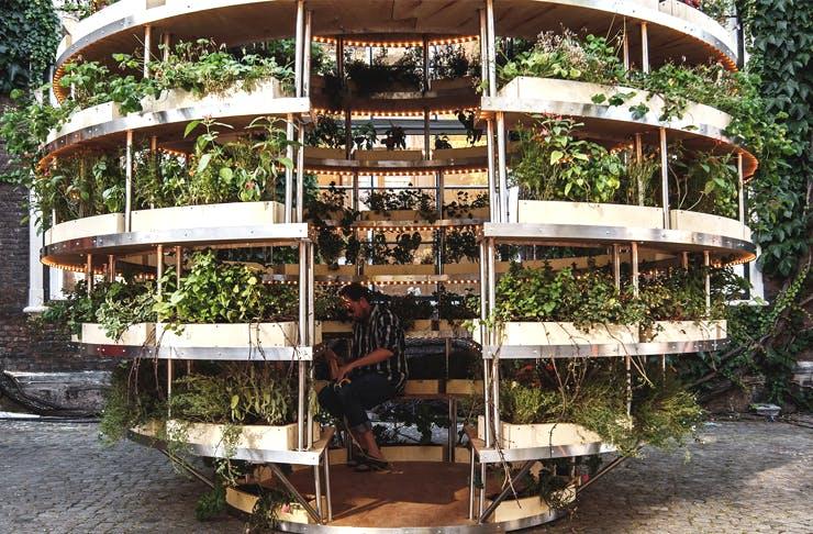 ikea-growroom-sydney