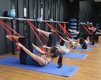 Habitat For Fitness