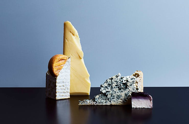 cheese-festival-sydney-free