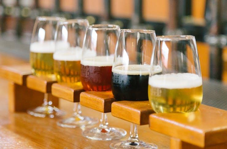 Hallertau Brewery West Auckland