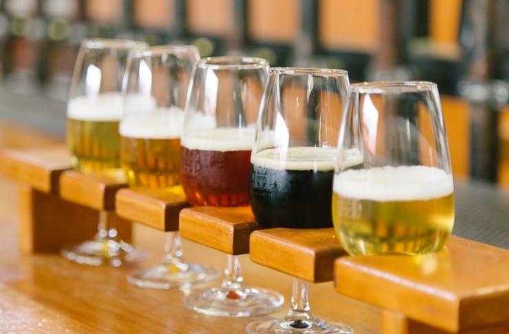 Auckland's Best Craft Beer Bars