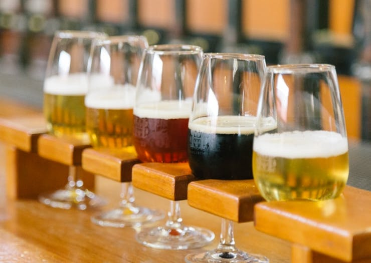 Auckland's Best Craft Beer Bars