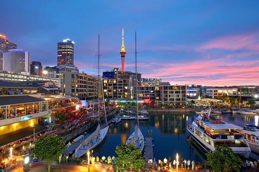 Here Are The Best Things To Do In Auckland This Week