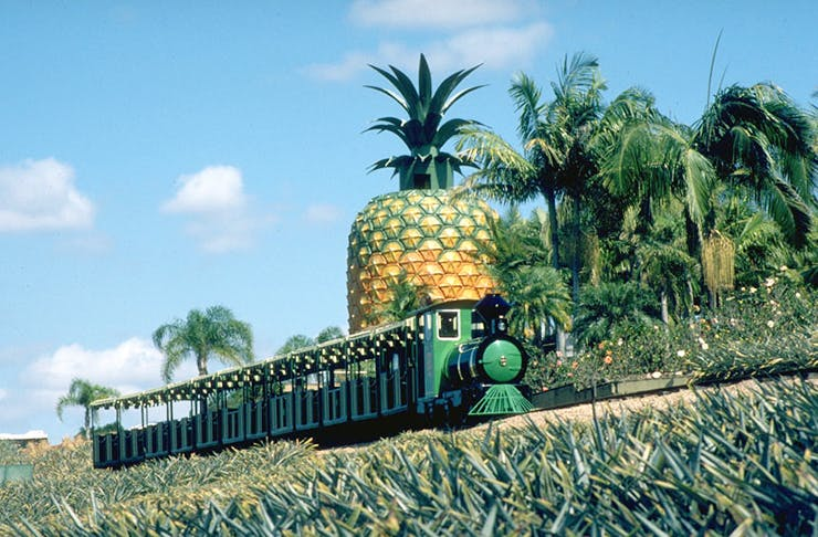 big-pineapple