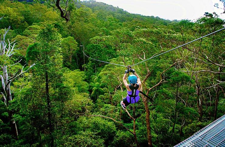 TreeTop Challenge Sunshine Coast