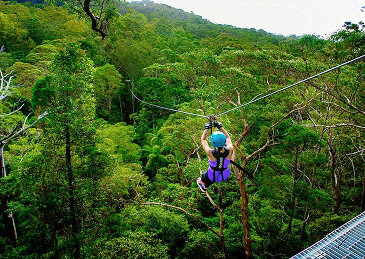 BREAKING | An Epic Zipline And High Ropes Course Is Coming To The Coast This Summer