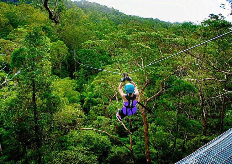BREAKING   An Epic Zipline And High Ropes Course Is Coming To The Coast This Summer