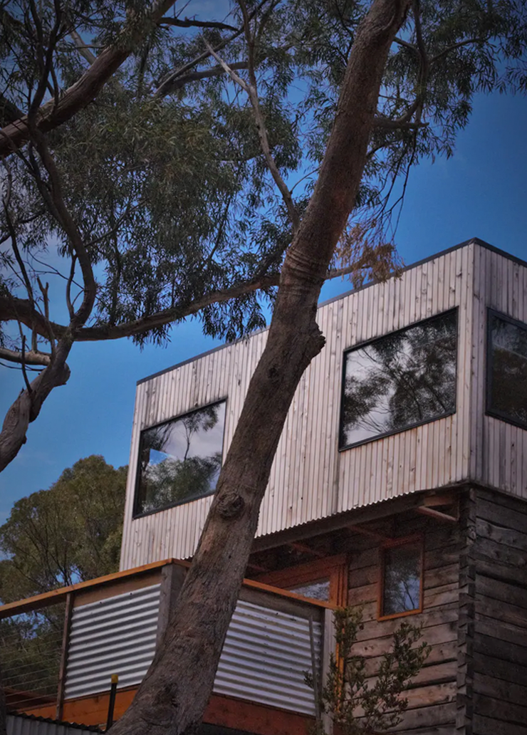 A tin treehouse beneath the branches of two large gumtrees.