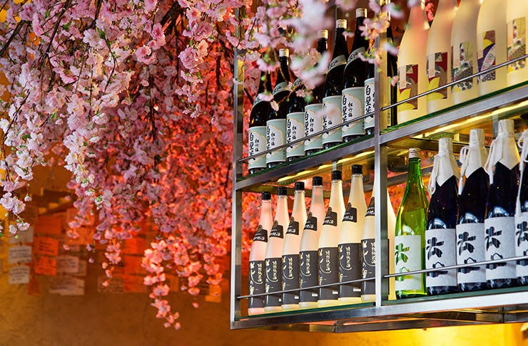 tips for how to drink sake